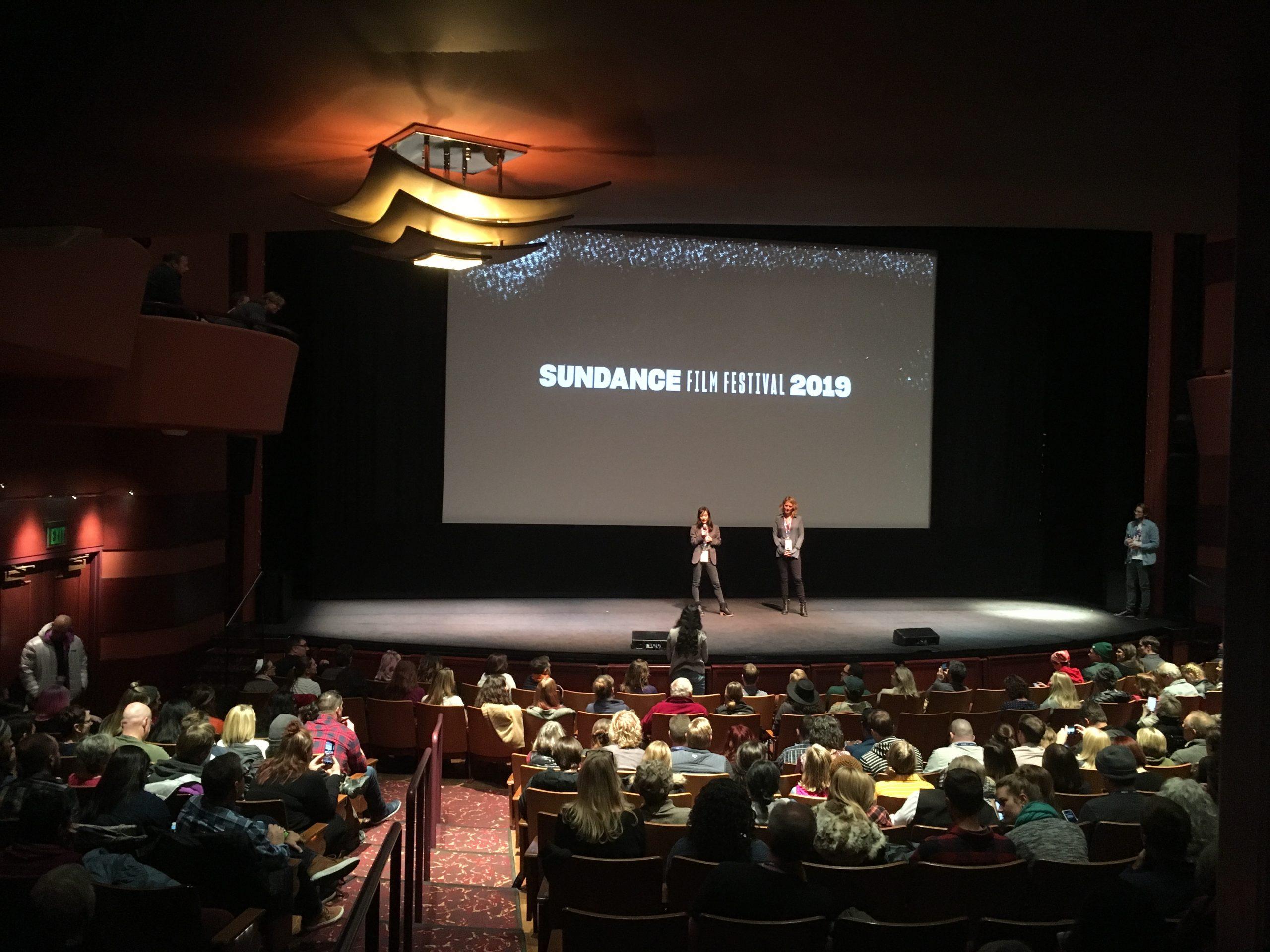Episode 4. Special Sundance Report.
